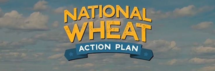 National Wheat Action Plan Video Goes Viral!