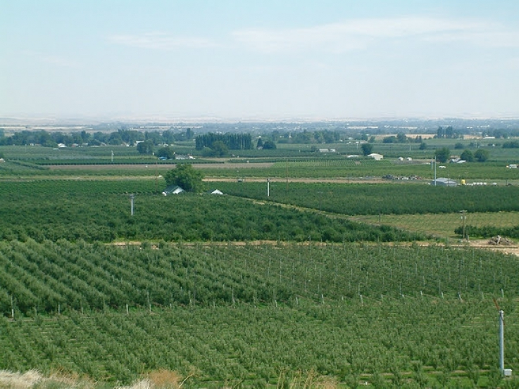 Crop Insurance Deadlines Near in ID, OR, & WA